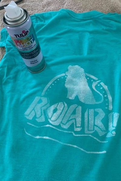 ColorShot Fabric Spray and T-Shirt