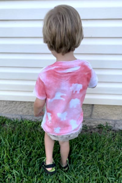 Back of T-Shirt for VBS worn by preschooler